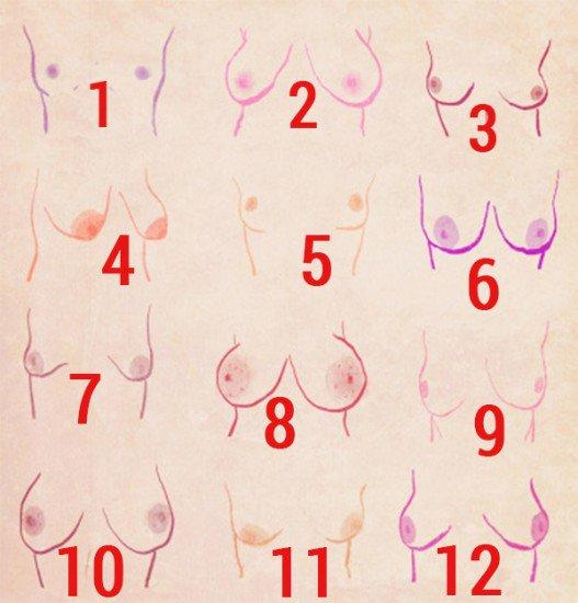 Is breast number four ugly and what's your favorite shape?