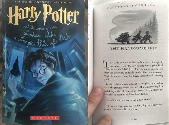 What do you think of this newly leaked sample of a Harry potter novel??