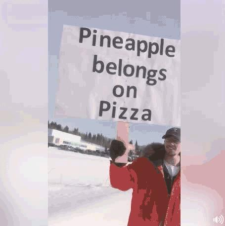 How do you feel about putting pineapple on pizza?