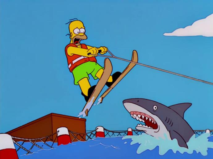 Have you 'Jumped the Shark' in your life?