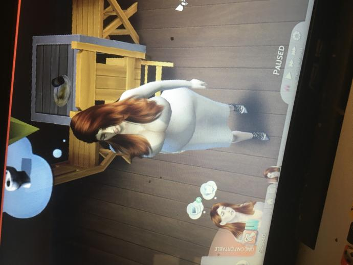 What do you think about my Sims on the Sims 4?