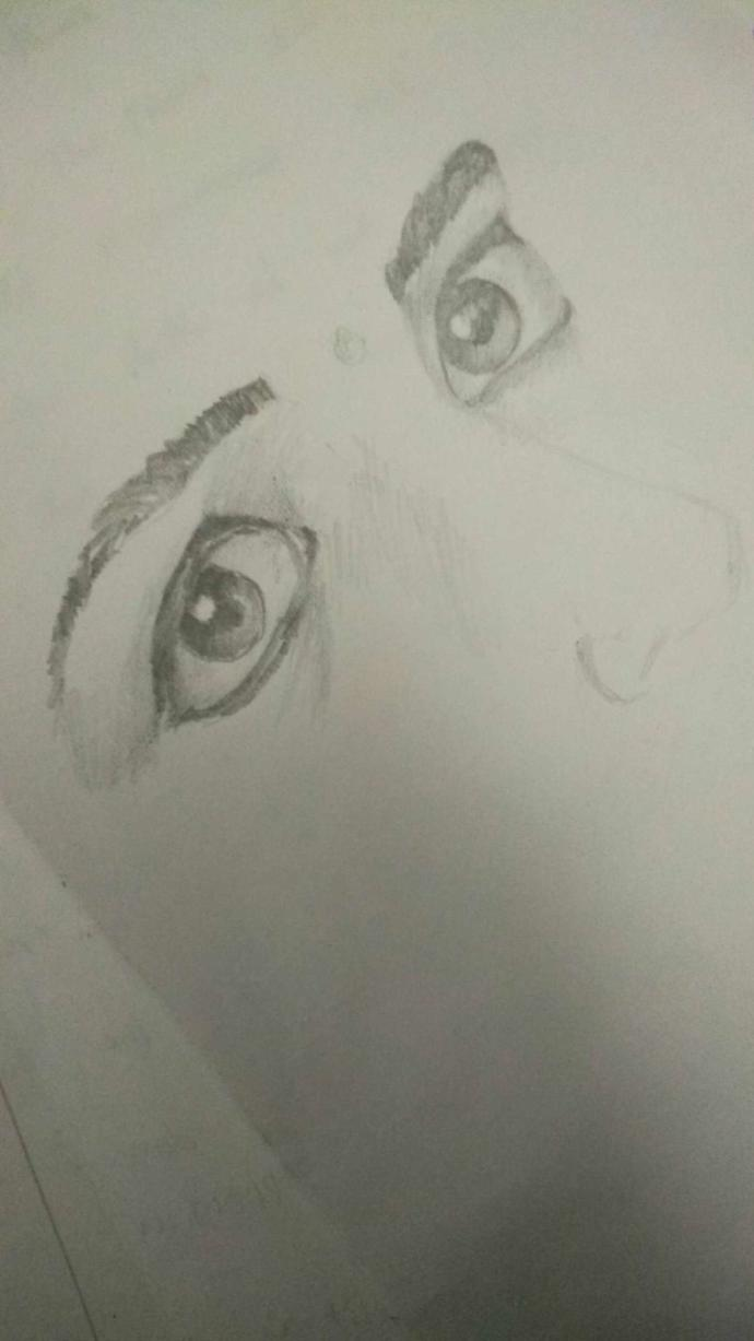 Do these eyes look expressive???
