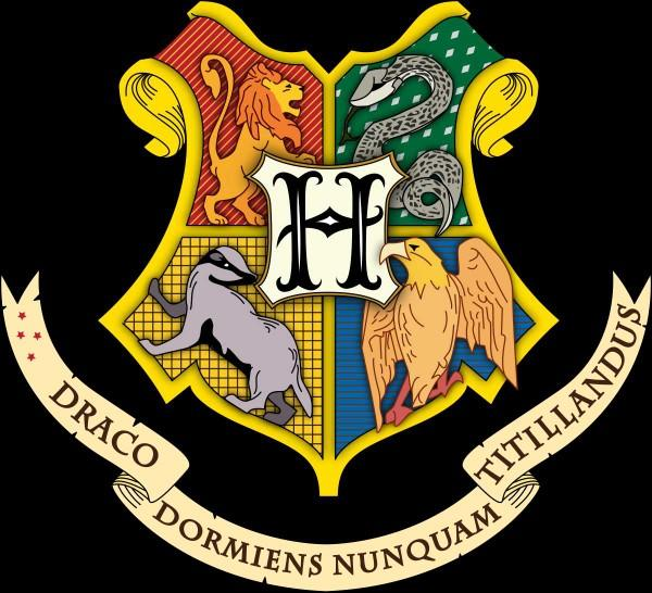 What Hogwarts house would you be sorted to??