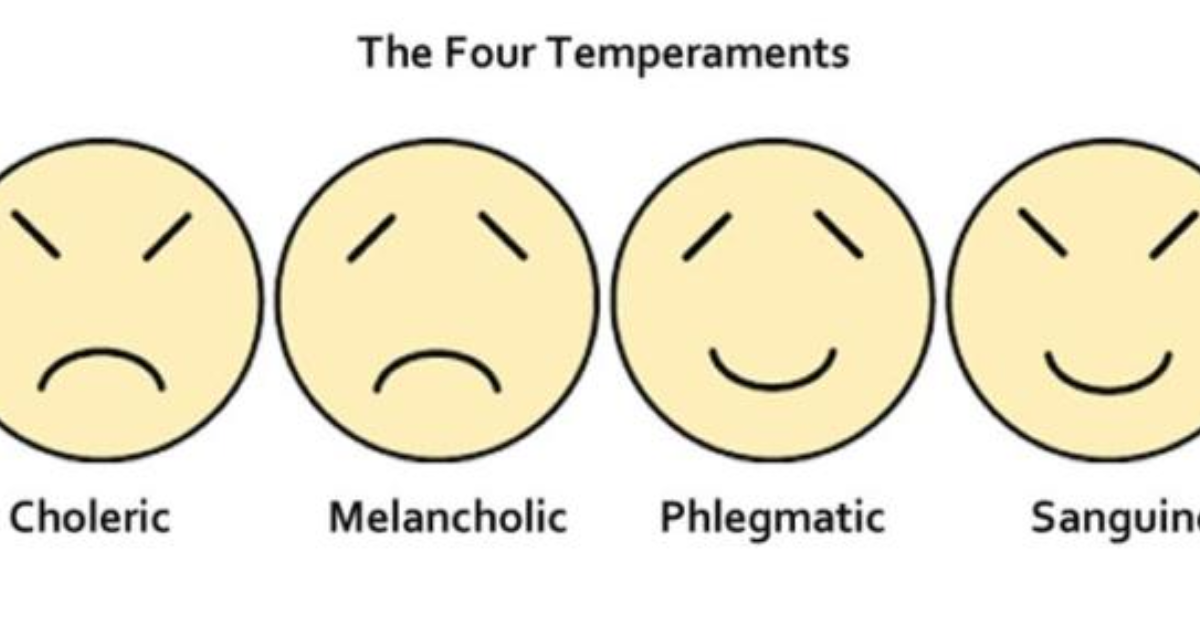 the case of the temperamental talent The case of temperamental talent harvard business review (will be handed out previous class) (come into class having made a decision: do you keep ken vaughn or let him go.