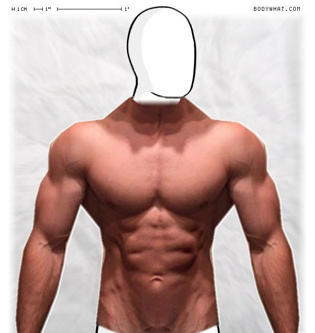 Girls, Poll : Vote the body type you most prefer in Men (For women) ?