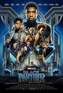 Am I the only who really didn't like Black Panther?