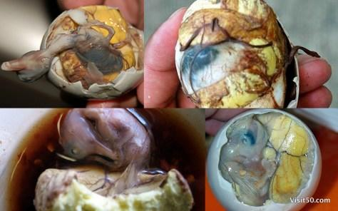 Would you rather eat Smalahove(head of a sheep) or Balut(boiled duck embryo inside an egg) if you were only given these two options?