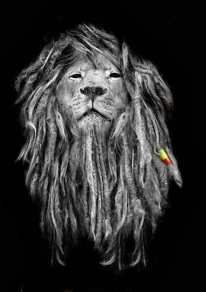 RASTAFARI LION MAN?
