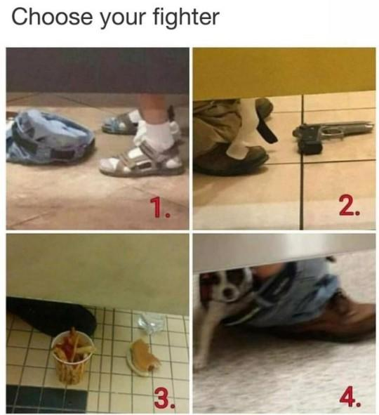 Choose your fighter?