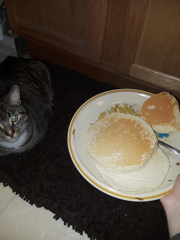 Want some pancakes?
