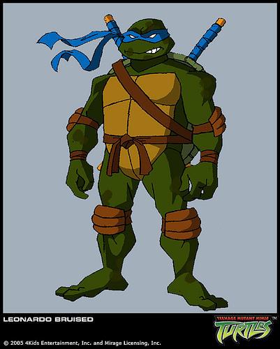 Who's your most favorite Teenage Mutant Ninja Turtle character?