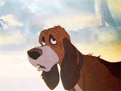 Rate this Full length Disney Animated Feature: The Fox and the Hound?