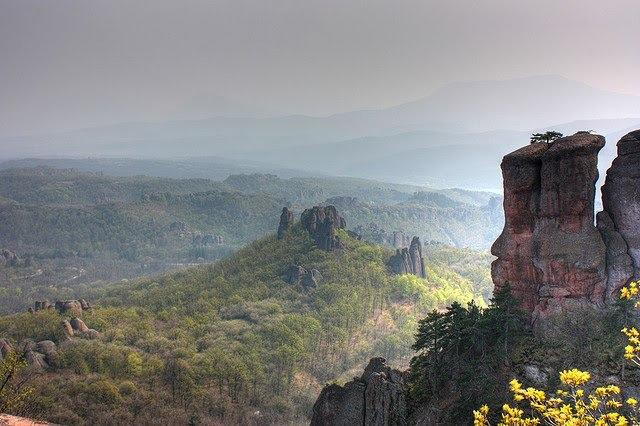Who is planning to visit bulgaria one day?