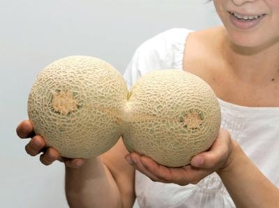 rate my melons?