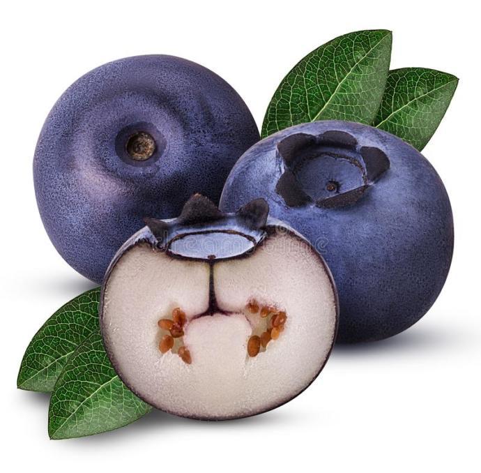 Why arn't blueberries blue?