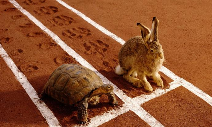 In general, are you a fast or slow learner?