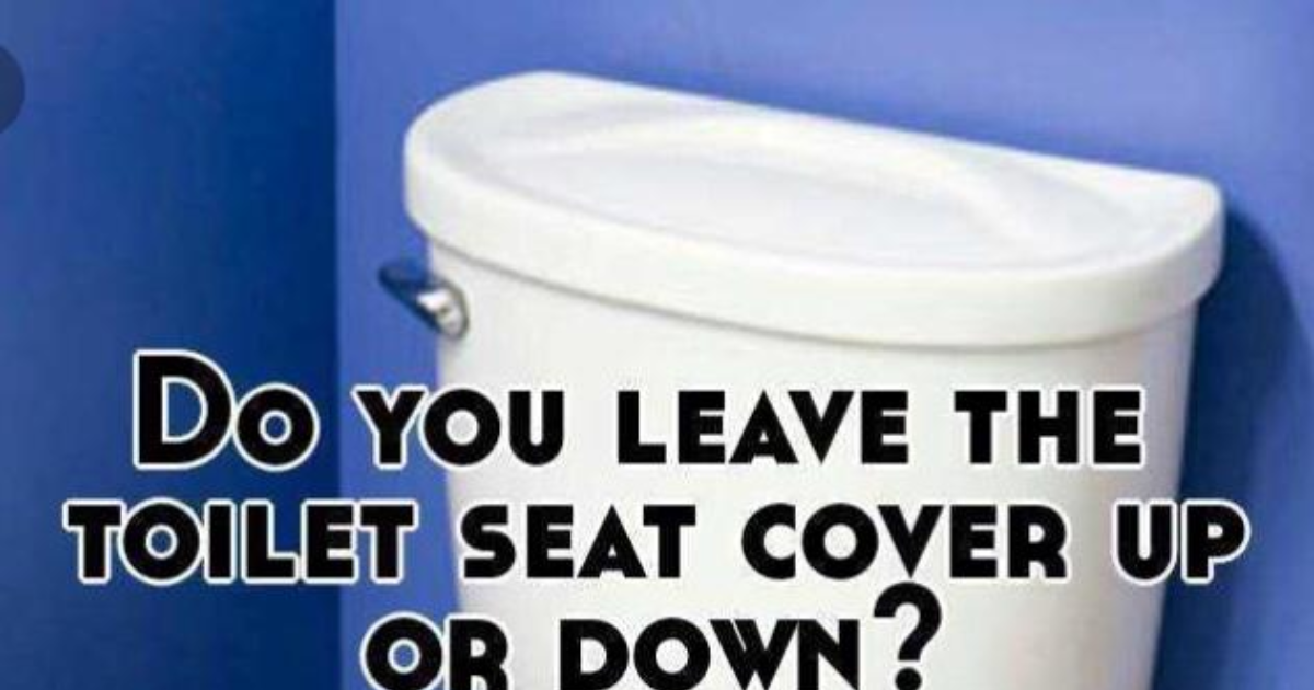 Swell Toilet Seat Up Or Down Girlsaskguys Ncnpc Chair Design For Home Ncnpcorg