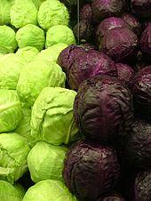 Do you like Cabbage?