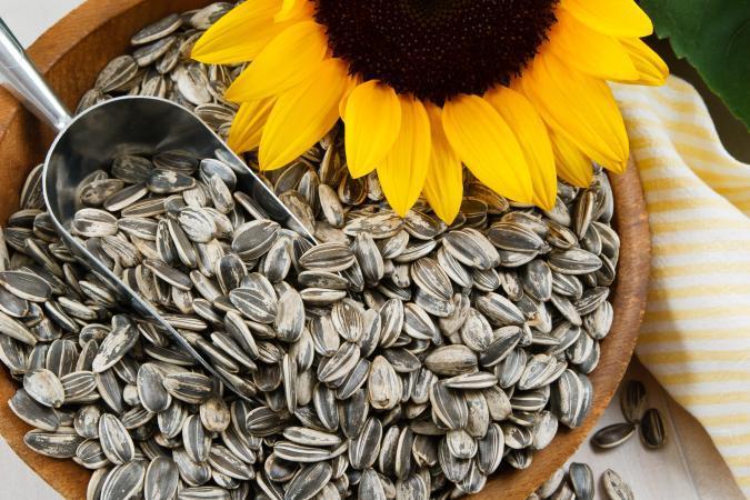 Do you like eating sunflower seed?