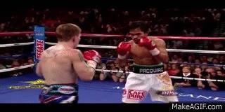 For those who are boxing fans, which of the following All-Time Great Boxers and former World Champs are your most personal favorite of all-time?