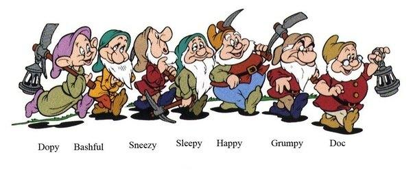 If you were one of Snow Whites seven dwarfs, which one would you be?