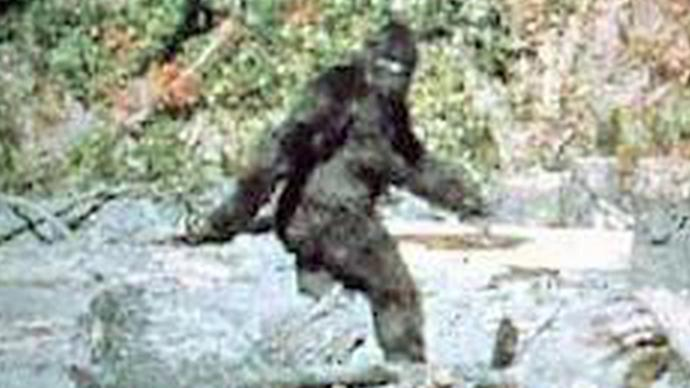 A still from the famous Patterson / Gimlin film