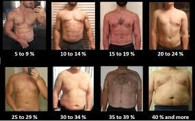 Girls, what body fat you prefer?