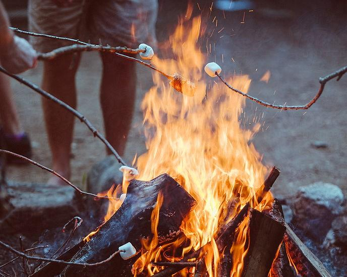 Have you ever toasted marshmallows on a campfire?