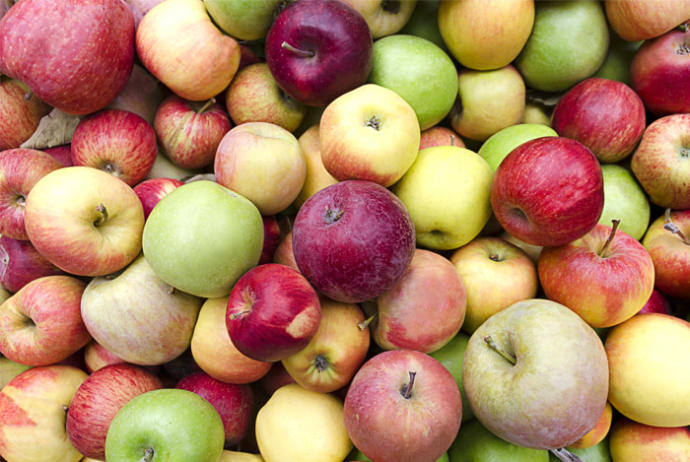 What's your favorite type of apples?