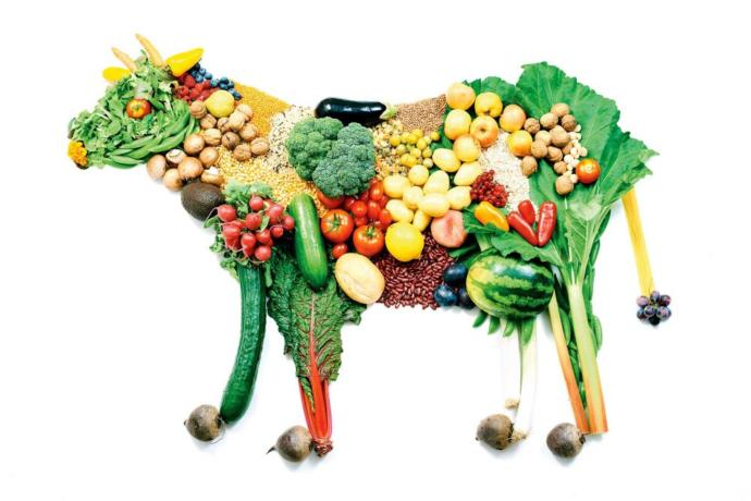 What is your opinion on vegetarianism/veganism?