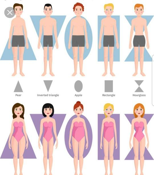 What type of body shape are you?