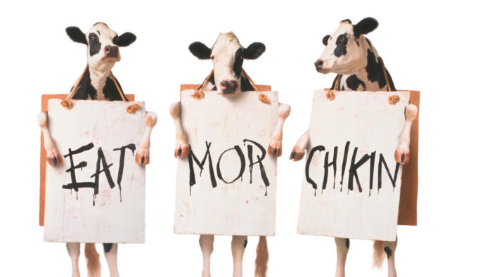 How do you feel about Chick-Fil-A?