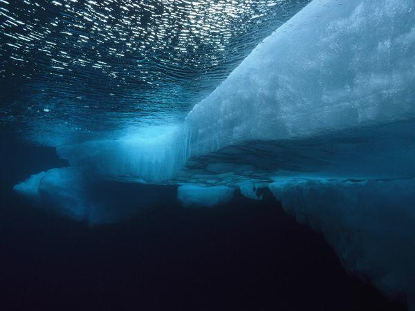 What part of the oceans do you think is the most interesting?