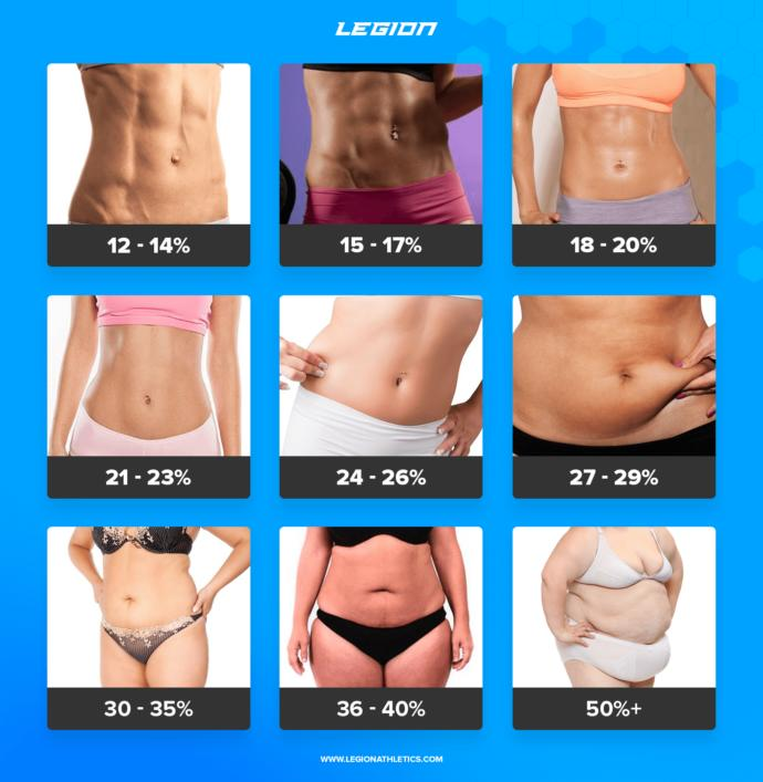What is your body fat percentage?