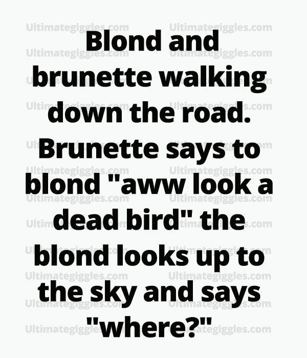 Brunette versus Blonde... what's so funny about that?