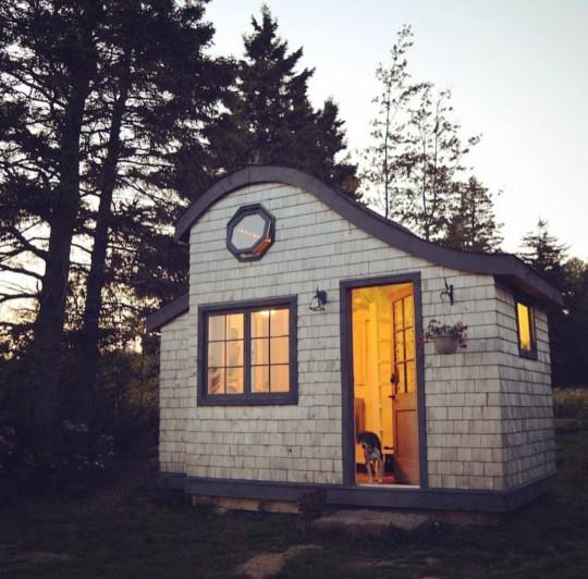 Would you rather live in a tiny house or small apartment??