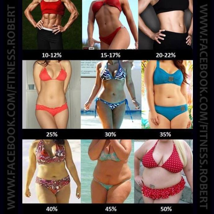 Which body type/weight do you prefer?