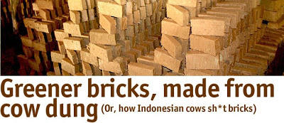What About Bricks Made From Poo?