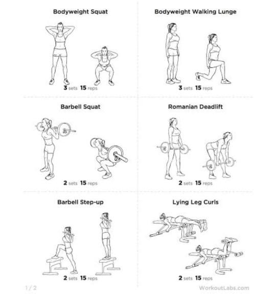 Do you like training your upper or lower body more??