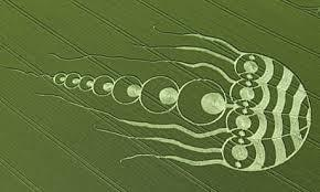Which Option Best Reflects Your View of Crop Circles?