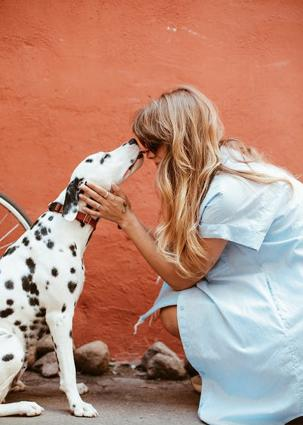 Do you feel comfortable dating someone who is very close to their dog?