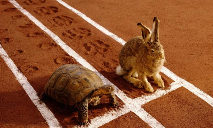 What is the moral of the story about the tortoise and the hare?