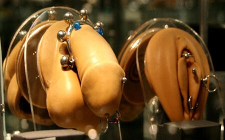 Why do girls and/or guys have their genitals pierced? Would you ever do anything like that?