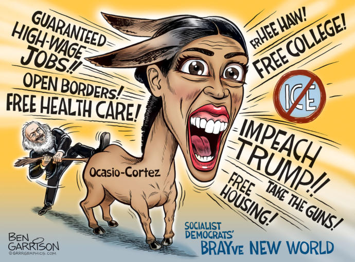 Do you think the Democrat Party will support a candidate to unseat AOC in the 2020 election?