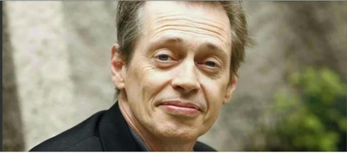 Would you sit on Steve Buscemi's weird face?