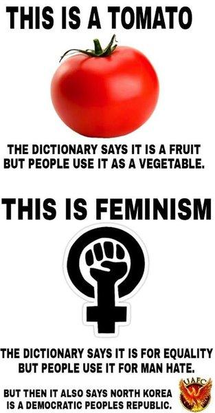 Is FEMINISM about hating men? Why do FEMINISTS claim that misandry isn't harmful?