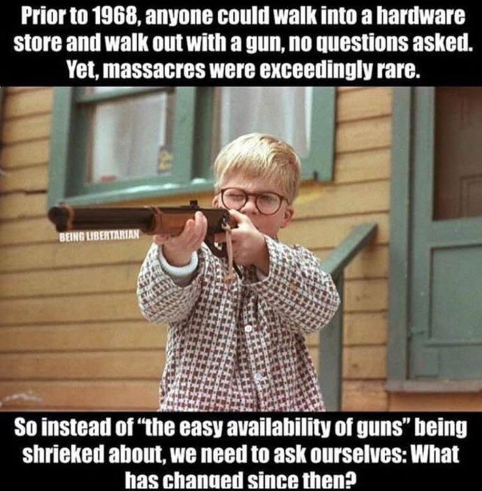 Should guns be outlawed in the USA?