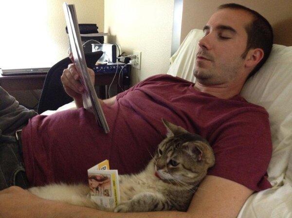 Man's best friend? Cats are QUITE intelligent!