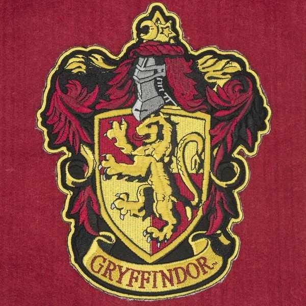 What Harry potter house do you belong in??