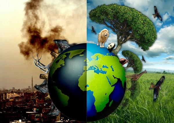 How or what can the modern human race do to save Earth?